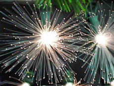Solar Festive Fiber Optic Light