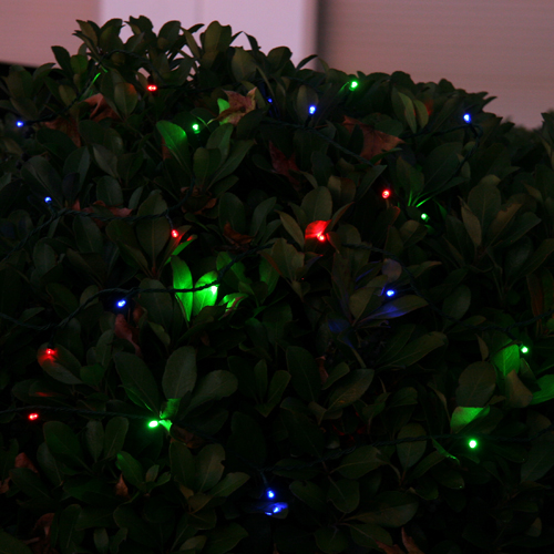 Solar Festive LED Light
